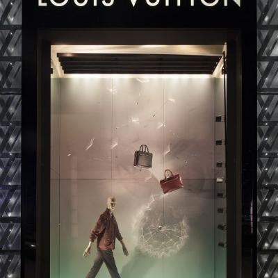 Louis Vuitton Wd20150129009